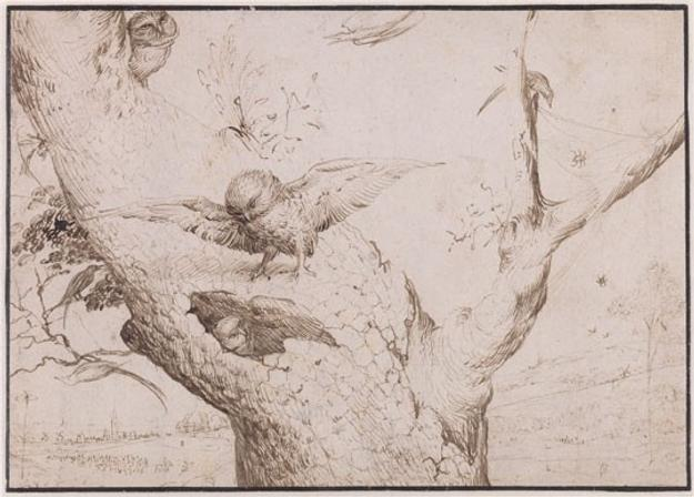 Hieronymus Bosch, The Owl's Nest, c.  1505/1515 pen and brown ink on paper, laid down Museum Boijmans Van Beuningen, Rotterdam