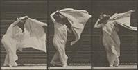 Eadweard Muybridge, Lifting shawl, putting it around shoulders and turning, plate 233 [detail] from Animal Locomotion, 1887.  Heckscher Museum of Art; Gift of Mrs.  Jill Tane.