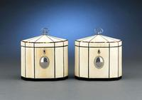This extraordinary pair of George III period tea caddies are enveloped in ivory, with tortoiseshell and sterling silver trim and mounts.  Circa 1790.