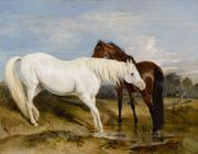 The famed Sir Edwin Henry Landseer painted this amazing Portrait of an Arab Mare with her Foal at the request of Princess Charlotte.  The painting was given to her lady-in-waiting, Lady Barbara Ponsonby.