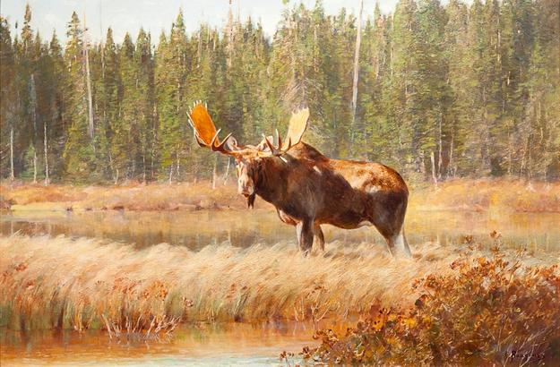 Carl Clemens Mortiz Rungius (1869-1959), Bull Moose, oil on canvas, 23 1/4 by 35 1/2 inches, Sold for $180,000
