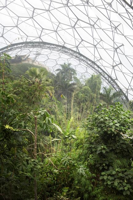 Alberto Giuliani, Eden Project Biospheres, Cornwall, UK, 2017.  Courtesy of the artist