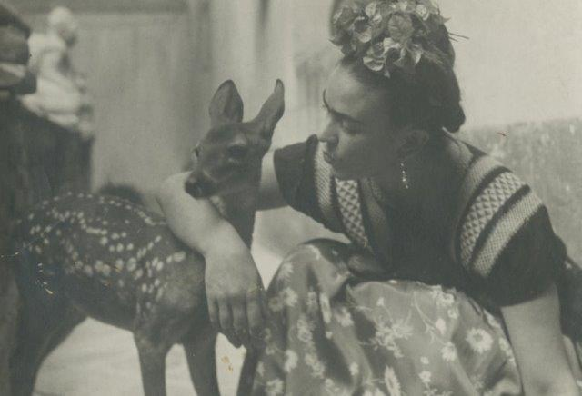 Nickolas Muray image of FRIDA WITH FAWN 1939