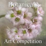 Botanical & Floral Online Art Competition