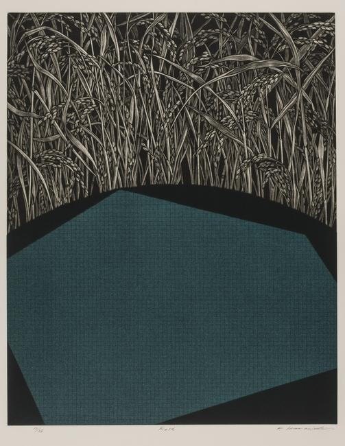 HAMANISHI Katsunori , Field, 1997, Mezzotint; ink and color on paper, edition 10/25, Gift of the Jack and Susy Wadsworth Collection of Japanese Prints, 2012:7.23