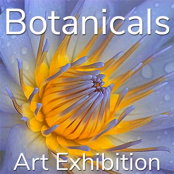 "10th Annual ""Botanicals"" Online Art Exhibition www.lightspacetime.art"