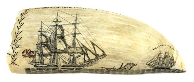 Masterpiece scrimshaw whale's tooth by Edward Burdett