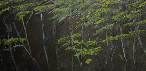 Caspar Baum, Night in the Botanical Garden, Oil on Canvas, 36'' x 72''