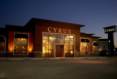 Cyrus Artisan Rugs Showroom