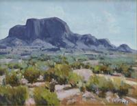 "David Forks, Summer Chisos, 2012, Oil on panel, 11"" x 14"""