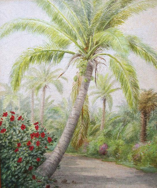 "Laura Woodward's (1834-1926) ""Palm Beach Trail"" is part of an exhibition of the artist's work, timed for the celebration of the Town of Palm Beach Centennial, at Edward and Deborah Pollack Fine Art in Palm Beach, Florida."