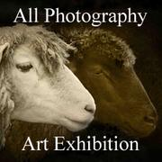All Photography Art Exhibition