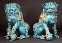Pair of Chinese three color glaze Buddhist lions Ming Dynasty, from Peter Vallin.