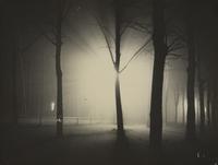 Lyonel Feininger, Untitled (Night View of Trees and Streetlamp, Burgkühnauer Allee, Dessau), 1928.  Gelatin silver print.  Gift of T.  Lux Feininger, Houghton Library, Harvard University, MS Ger 146.4 (291).  © 2012 Artists Rights Society (ARS), New York/VG Bild-Kunst, Bonn.