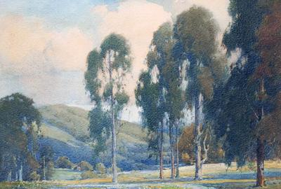 "Percy Gray ""Eucalyptus Trees and Wildflowers"" Watercolor 16 x 20 inches AVAILABLE NOW"