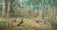 Louis Agassiz Fuertes' (1874-1927) oil of wild turkey sparked highly competitive bidding to a final price of $86,250, double the high estimate of $40,000, and nearly triple the artist's previous record.