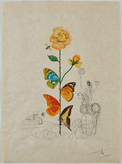 Salvador Dalí, Rosa papillonacea (Butterfly Rose), 1968.  Collection of The Dalí Museum, St Petersburg, FL (USA) 2019; © Salvador Dalí, Fundació Gala-Salvador Dalí, (ARS), 2019