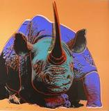 Black Rhinoceros, Endangered Species Portfolio, 1983, silkscreen print on Lenox museum board, Andy Warhol, Columbus Museum Purchase 1983.33