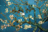 Van Gogh's Almond Blossom (1890) can be ordered as a 3D replica called Relievo from Amsterdam's Van Gogh Museum.