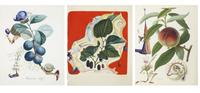 Fourteen original Salvador Dalí watercolour fruit studies sold for the total of £726,700.