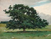 "George M.  Bruestle (1871 - 1939) Meadow Oak unsigned, dated, Essex, Conn.  1886, verso, oil on canvas, 12"" x 16"".  $4,500."