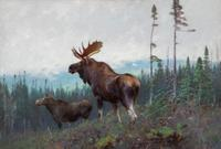 Carl Clemens Moritz Rungius (1869-1959), Moose on a Ridge, Oil on canvas, 26 by 38 inches, Estimate: $150/250,000