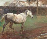 Irish Grey Mare by Sir Alfred James Munnings
