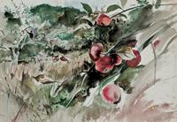 Watercolor painting by the renowned American artist Andrew Wyeth (Pa./Me., 1917-2009), titled Picking Apples (est.  $80,000-$100,000).