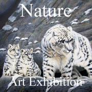 The Nature Art Exhibition