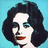 "Steven A.  Cohen sold his Warhol ""Liz #5"" for nearly $27 million in 2011."