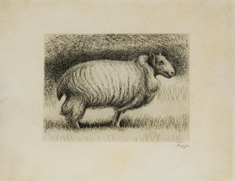 The Show Sheep Etching, 1974.  Signed in pen.  A proof aside from the edition of 80.  Printed on vellum.  Printed by Lacouriere and Frelaut, Paris.  Published by Gerald Cramer, Geneva.  (Cramer 229)