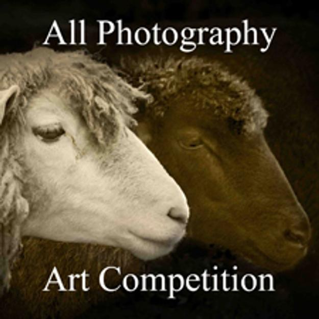 Call for Entries – 3rd Annual All Photography Online Art Competition