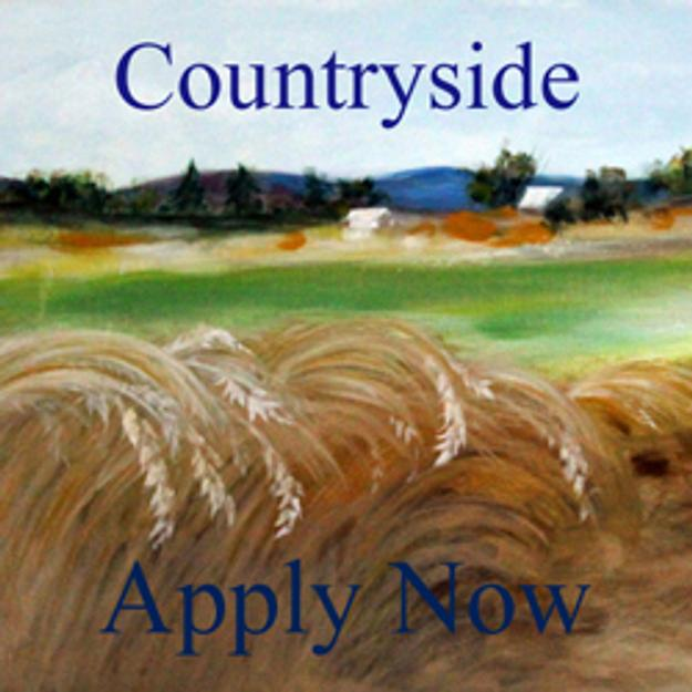 Countryside Art Competition - www.lightspacetime.com