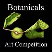 Botanicals Art Competition - www.lightspacetime.com