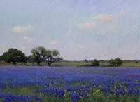 Noe Perez, Bluebonnet Field Near San Antonio, 2011, oil on canvas, 20 x 27.75 inches