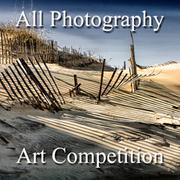 "4th Annual ""All Photography"" Online Art Competition"