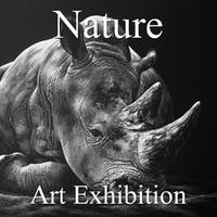 "7th Annual ""Nature"" Online Art Exhibition"