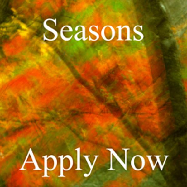 Seasons - Juried Art Competition
