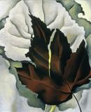 Georgia O'Keeffe (1887–1986) Pattern of Leaves, 1923 Oil on canvas © The Georgia O'Keeffe Foundation / Artists Rights Society (ARS), New York Acquired 1926, The Phillips Collection, Washington, D.C.