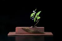 "Nakamura Takuo (b.  1945) Ash-glazed stoneware vase on thin slab.  3.5 x 13.8 x 2.4; .5 x 21.3 x 5.5"""