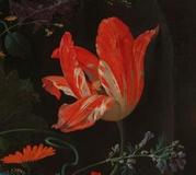 Abraham Mignon, The Overturned Banquet, c.  1660 (detail) Rijksmuseum