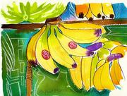 Fine Art Daily, odd bananas