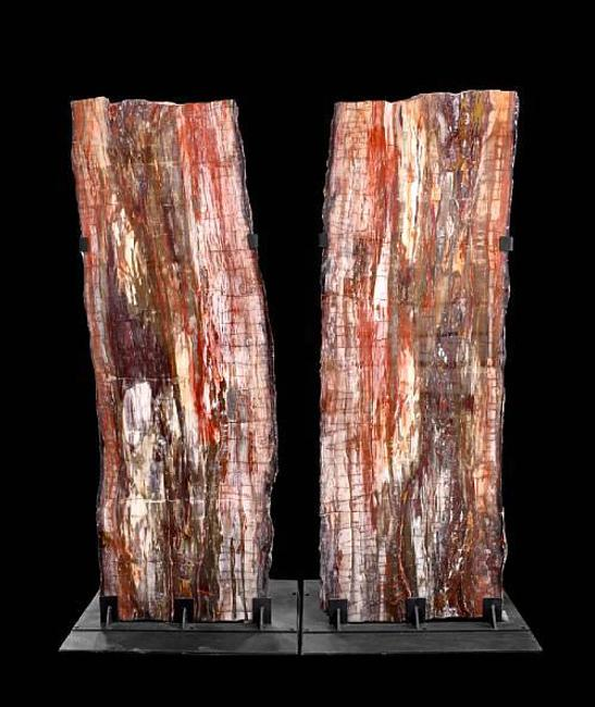 This beautifully preserved, silicified coniferous log was cut and polished into a vertical cross-section pair.  Discovered in northwestern China, the pair of log sections stands an impressive 9 ft.  3 in.  tall.  Each section weighs in at approximately 4,000 lbs.  Sold for $109,800 inclusive of Buyer's Premium.