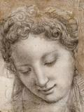 Drawings of Bronzino at the MET