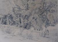 "David Johnson (1827-1908) - ""Near Buck Mountain"" - pencil on paper"