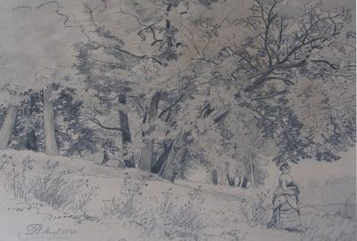 "David Johnson (1827-1908) - ""Near Buck Mountain"" - pencil on paper"