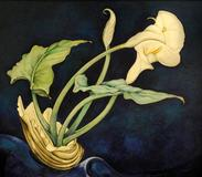 Charles Demuth, Calla Lilies, 1927.  Fisk University