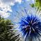 Dale Chihuly, Sapphire Star, 2016