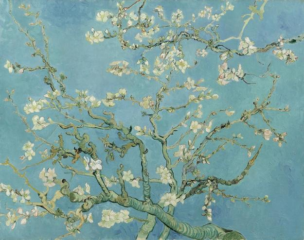 Almond Blossom by Vincent van Gogh (1853 - 1890), Saint-Rémy-de-Provence, 1890, oil on canvas, 73.3 cm x 92.4 cm.  Van Gogh Museum, Amsterdam (Vincent van Gogh Foundation)