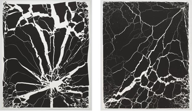 "Tara Donovan, ""Untitled,"" 2009.  (Two) Ink on Paper, 51 ′′× 42 ′′ each"